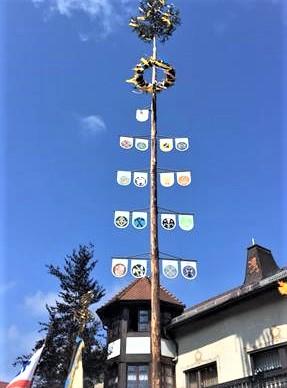 Traditionelles Maibaumstellen in Hauenstein