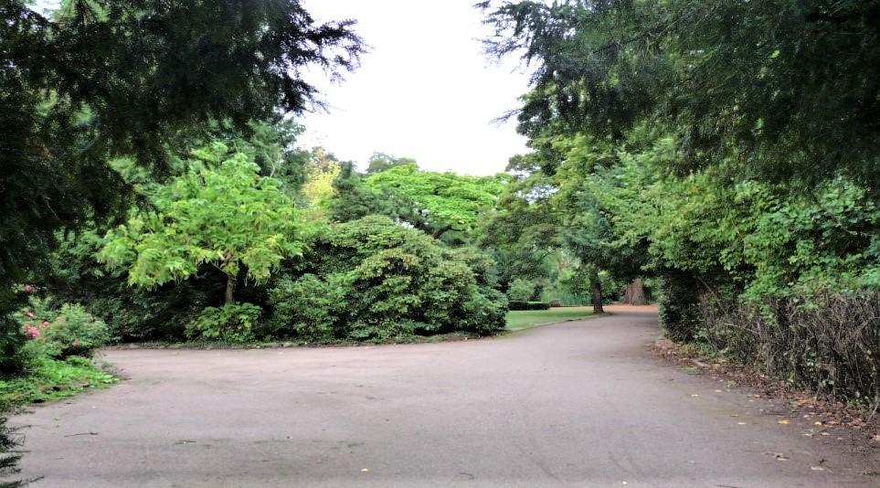 Aufwertung des Ambert Parks.Eine Projektidee zur Stadtentwicklung