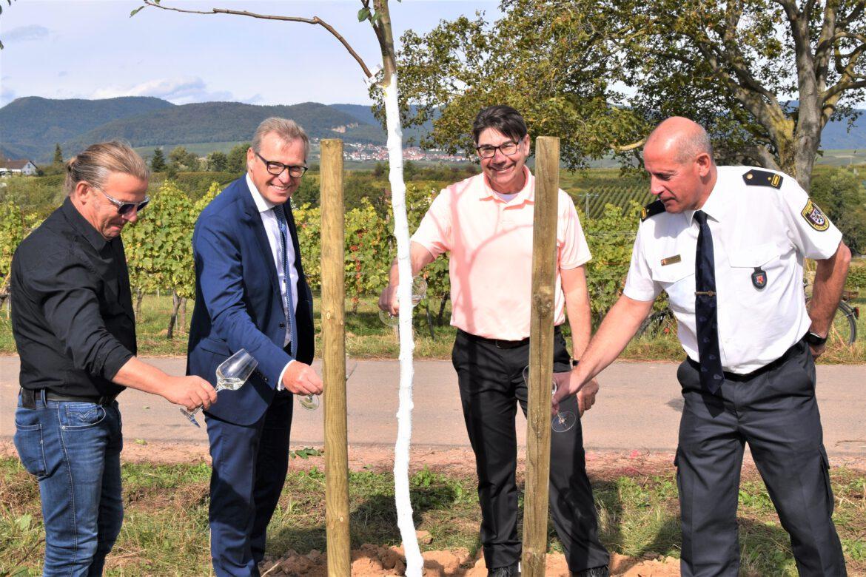 #Einheitsbuddeln: Für die Einheit und das Klima.22 neue Bäume zwischen Arzheim und Wollmesheimer Höhe gepflanzt