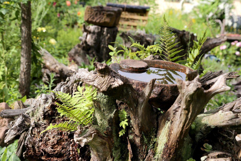 """Tiere im Garten – ein Garten für Tiere. Projekt """"Gärten für die Artenvielfalt – Jardiner pour la biodiversité"""""""