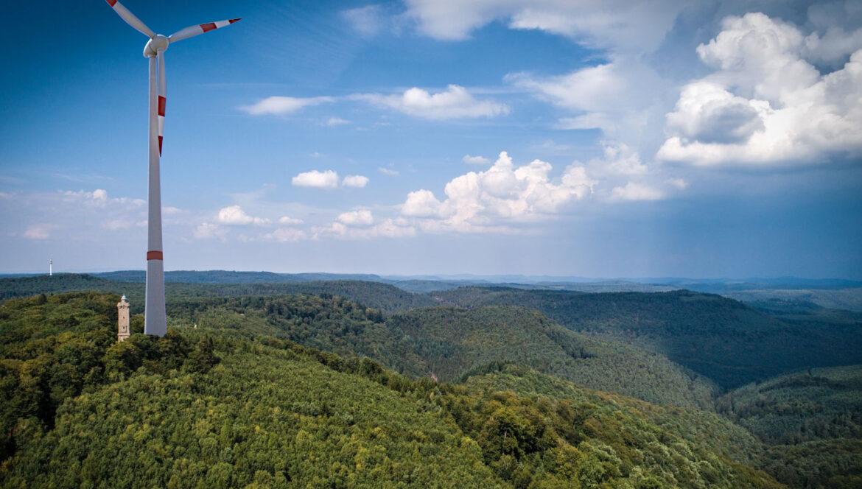 Pfälzerwald. Biosphären-Status in Gefahr.Christian Baldauf (CDU): Landesregierung muss von Windkraft-Plänen im Pfälzerwald Abstand nehmen